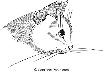 Nice cat head design - Black and white sketch of a nice cat...