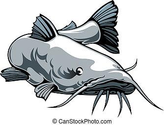 nice catfish - nice illustrated catfish isolated on white...