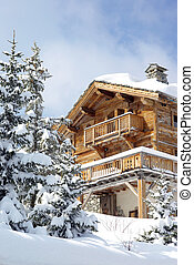 Nice chalet in a French ski resort.