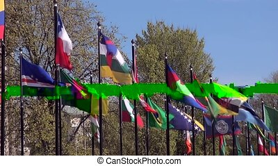 Nice colors of International flags.