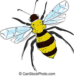 Nice drawing of bee, illustration, vector on white background.