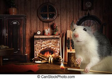Nice gray rat lights a fire in his cozy house
