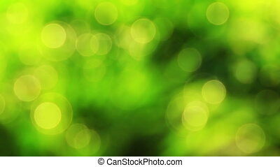 Nice green nature foliage bokeh fro