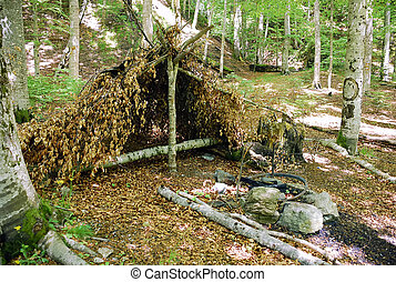 shelter - nice improvised shelter in forest, build in a ...
