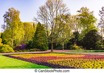 Nice park in the city with trees, Spring flowers and grass
