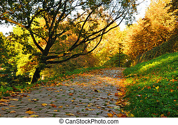 Nice pathway in the city at autumn in Fulda, Hessen, Germany