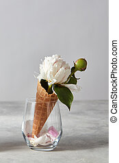 Nice white flower, bud and green leaf with petals in glass vase on gray stone table.