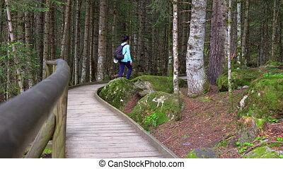 Nice wooden path of Aig?estortes i Estany de Sant Maurici...