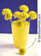 nice yellow chrysanthemums