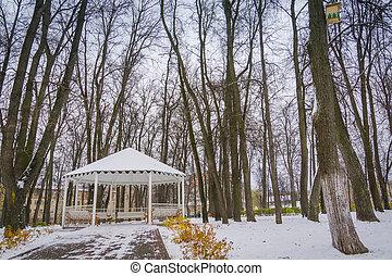 nicho, blanco, invierno