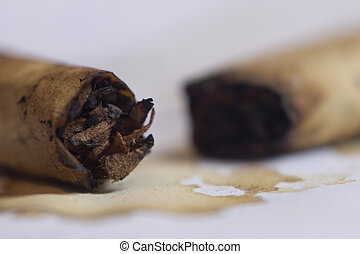 Photo showing unappealing substance coming from cigarettes