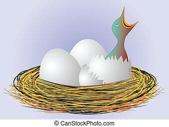 nid, vecteur, -, affamé, oiseau