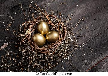 nido, dorado, huevos