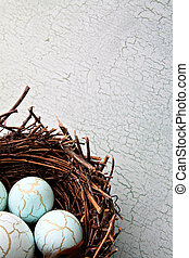 nido, huevos