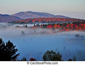 niebla, adirondack