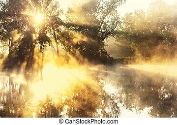 niebla, en, el, río