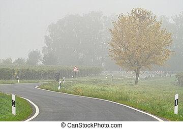 niebla, encima, el, camino