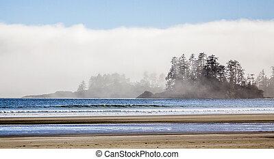 niebla, rollos, océano pacífico