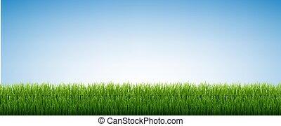 niebo, odizolowany, zielone tło, błękitny, trawa