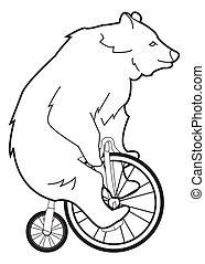 niedźwiedź, cykl