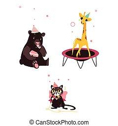 niedźwiedź, kot, i, żyrafa, na, urodzinowa partia