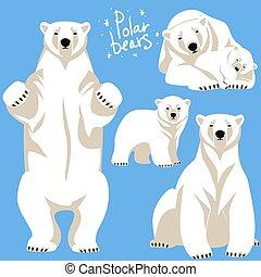 niedźwiedź, polarny, zbiór