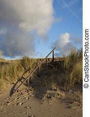 niederländisch, dünenlandschaft, mit, blauer himmel