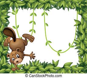 niejaki, bóbr, i, przedimek określony przed rzeczownikami, zieleń pokryta obficie liśćmi, brzeg