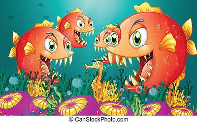 niejaki, seahorse, otoczony, przez, niejaki, grupa, od, głodny, piranhas
