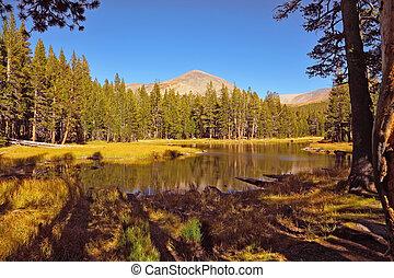 niejaki, spokojny, jezioro, w górach