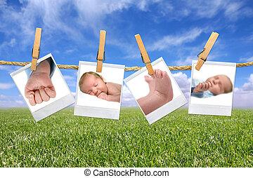 niemowlę, słodki, zewnątrz, fotografie, wisząc