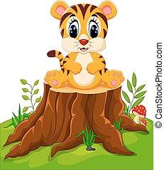 niemowlę, sprytny, tiger
