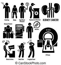 nier, kanker