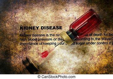 niere, krankheit, grunge, begriff