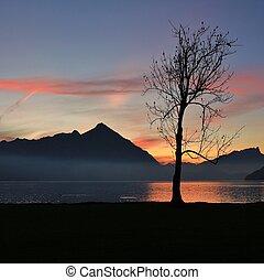 niesen, opstellen, meer, thun, ondergaande zon , neuhaus., switzerland., aanzicht