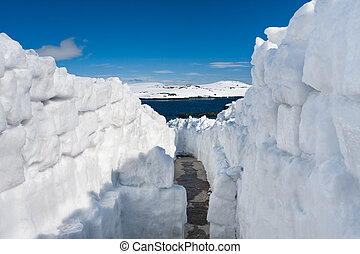 nieve, camino