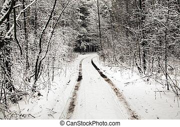 nieve cubrió camino