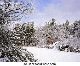 nieve fresca, en, lago