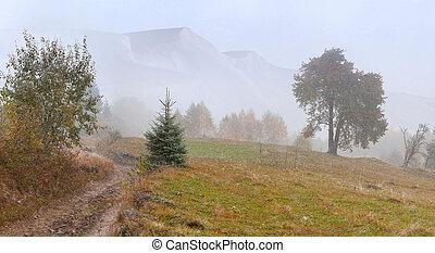 nieve, mañana, ventoso, noviembre, montañas., primero