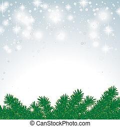 nieve, rama, abeto, luz