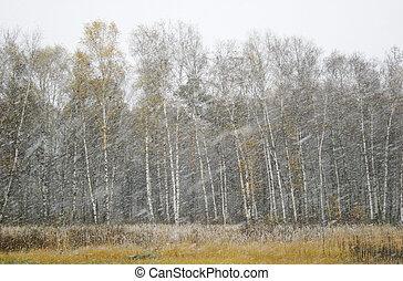 nieve, tiempo