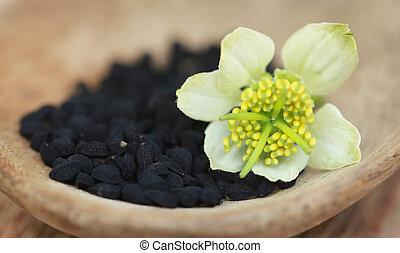 Nigella flower with seeds