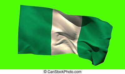 Nigeria national flag blowing in th