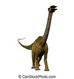 Nigersaurus on White