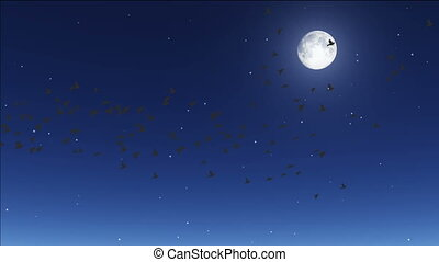 night 29 - birds flying by moon, stars twinkling in night...