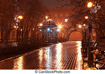 Night alley in the city park - Scenic view of empty night ...