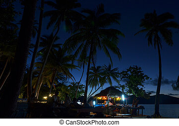 Night event on a tropical Island in Fiji - Night event on a...