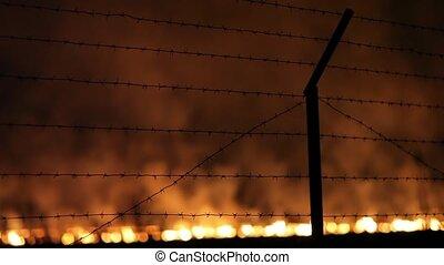 Night fire in a field
