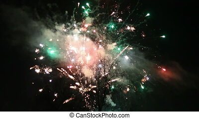 Night fireworks in the sky for a ho