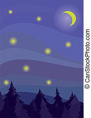 Night firmament(7).jpg